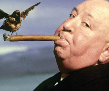 """""""Ptaki"""": Ostatnie arcydzieło Hitchcocka?"""