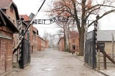 """Publikacja """"New Yorkera"""". Ambasada RP zaprasza Mashę Gessen do wizyty w Muzeum Auschwitz"""
