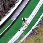 Puchar Świata w skokach narciarskich w Turcji? Jest wstępny kalendarz
