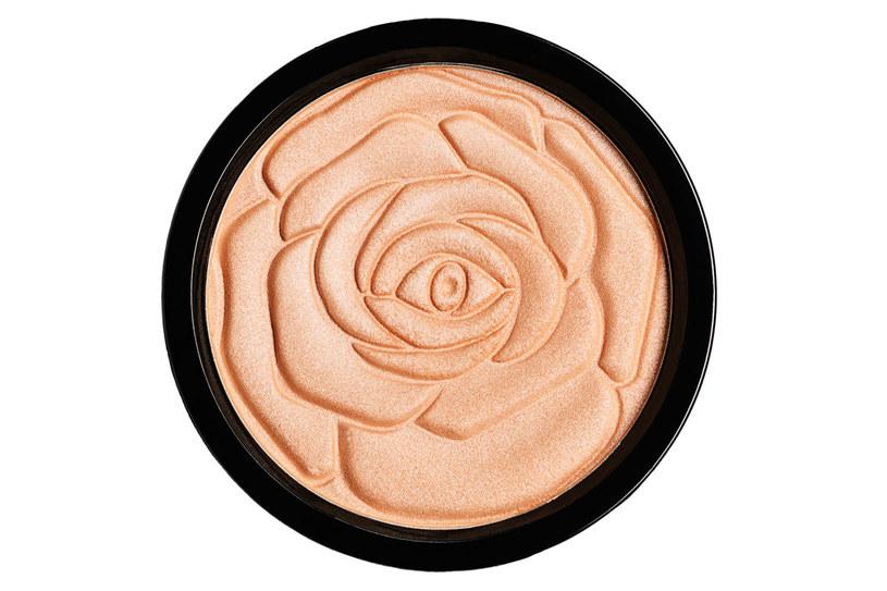 Puder rozświetlający w kamieniu INGRID HD Beauty Innovation /materiały prasowe