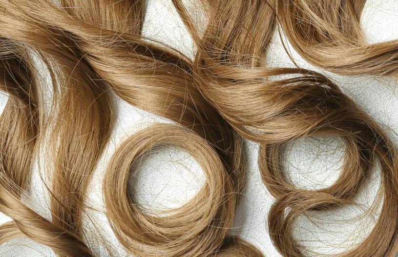 Pukle włosów warto rozłożyć na polach uprawnych /123RF/PICSEL