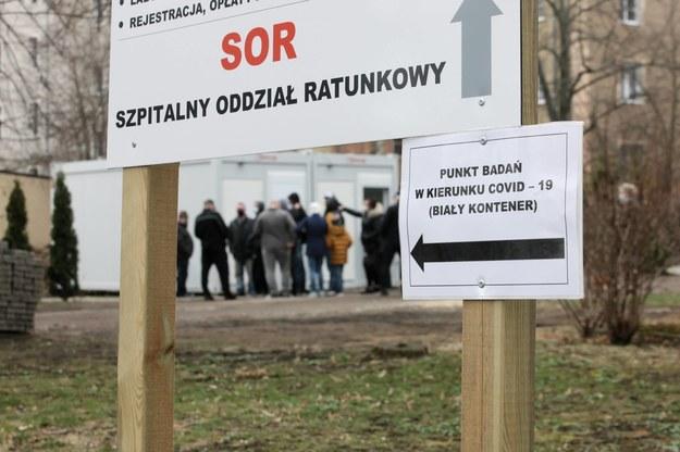 Punkt poboru wymazów do badań na obecność koronawirusa SARS-CoV-2 w Słubicach / Lech Muszyński    /PAP