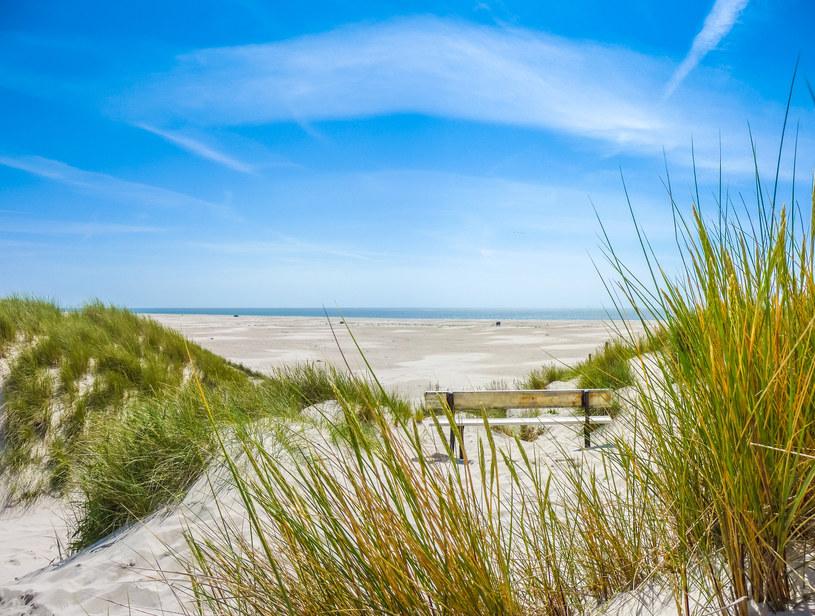Puste, piaszczyste plaże w Danii mogą być świetnym miejscem na odpoczynek /123RF/PICSEL