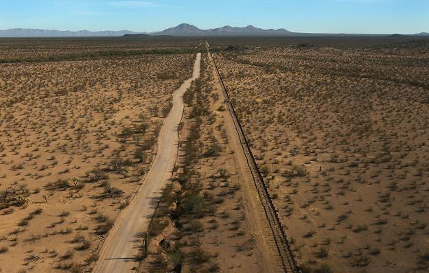 Pustynia Sonoran w Arizonie /AFP