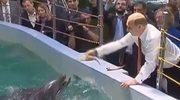 Putin przybił piątkę z lwem morskim!