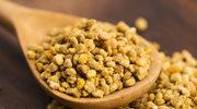 Pyłek pszczeli - nowy super food?