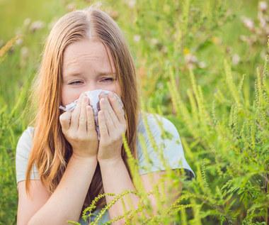 Pyłki roślin: Sposoby na wiosenną alergię