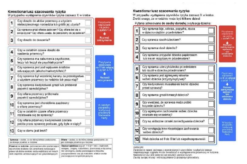 Pytania znajdujące się w kwestionariuszu /www.msw.gov /
