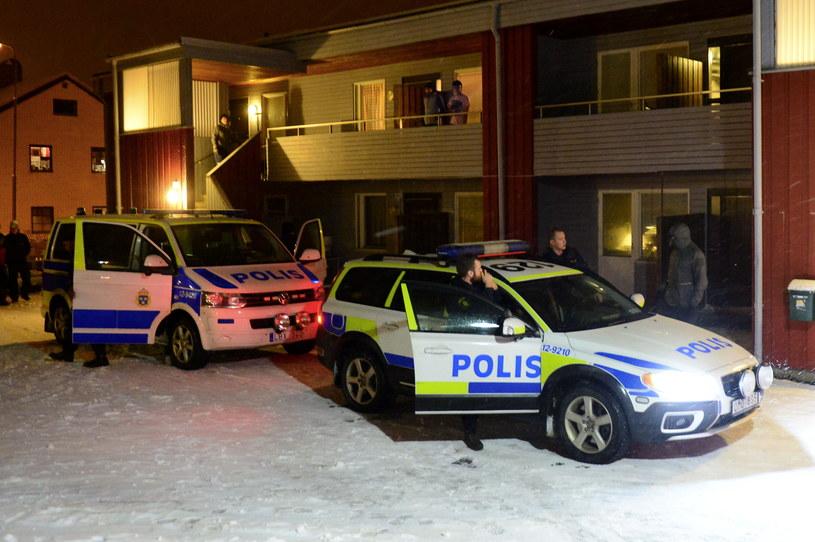 Radiowozy szwedzkich policjantów; zdj. ilustracyjne /AFP