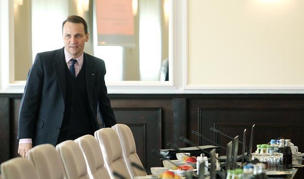 Radosław Sikorski/fot. R. Pietruszka /PAP
