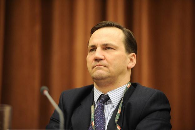 Radosław Sikorski wyraził rozczarowanie nowelizacją litewskiej ustawy o oświacie, fot. Piotr Wygoda /Agencja SE/East News