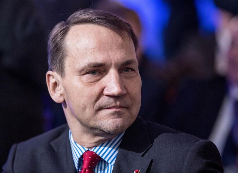 Radosław Sikorski /Andrzej Iwańczuk /Reporter