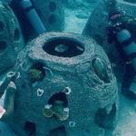 Rafa koralowa z ludzkich szczątków. Ratunek dla morskich organizmów?