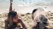 Raj dla świń