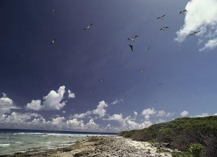 Rajski krajobraz z wysp Bikini /Getty Images/Flash Press Media