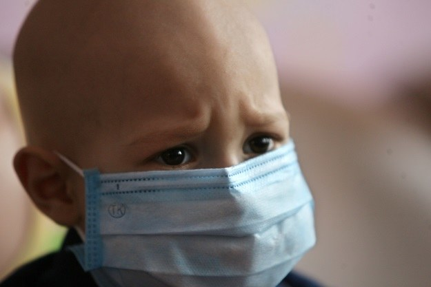 Rakowe komórki macierzyste dają początek wielu nowotworom, m.in. białaczce /AFP