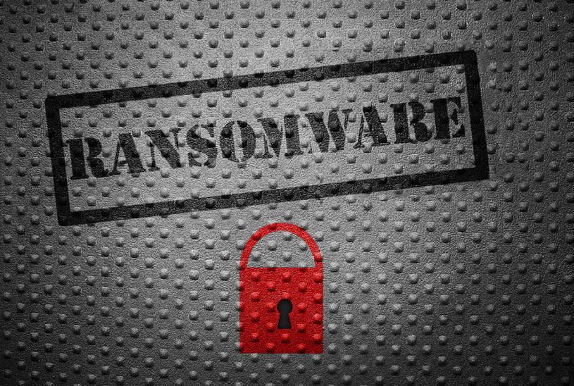 Ransomware, czyli obecne zagrożenie sieciowe nr 1 notuje rekordowy wzrost popularności /materiały prasowe