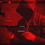 Raport cyberbezpieczeństwa: 52 proc. litewskich portali zagrożonych atakami