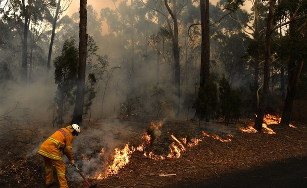 Raport: Pożary w Australii