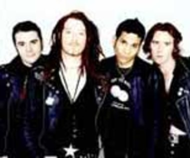 Rarytasy The Wildhearts