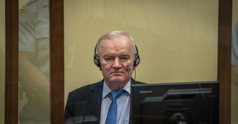 Ratko Mladić /JERRY LAMPEN / POOL /PAP/EPA