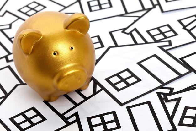 Raty kredytów hipotecznych pójdą w dół /©123RF/PICSEL