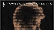 """Recenzja Pawbeats """"Orchestra"""": Gardło poderżnięte smyczkiem"""