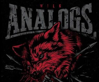 """Recenzja The Analogs """"Wilk"""": Wilk jest dziki, wilk jest zły"""