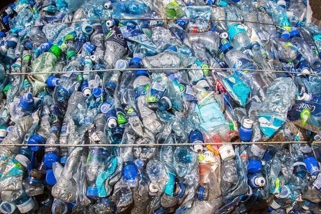 Recycling, kaucje, butelkomaty mają nas uchronić przed katastrofą ekologiczną /AFP