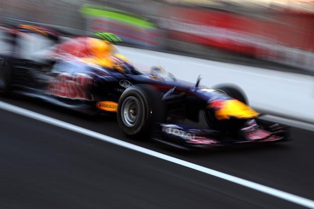 Red Bull w najbliższych latach będzie korzystał z silników Renault /AFP