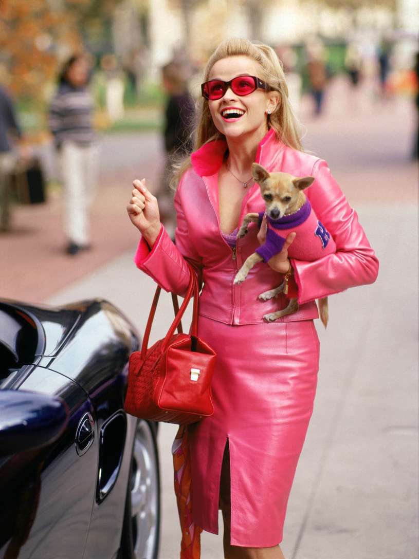 "Reese Witherspoon z chihuahuą Moonie w filmie ""Legalna blondynka"" /East News Russia /East News"