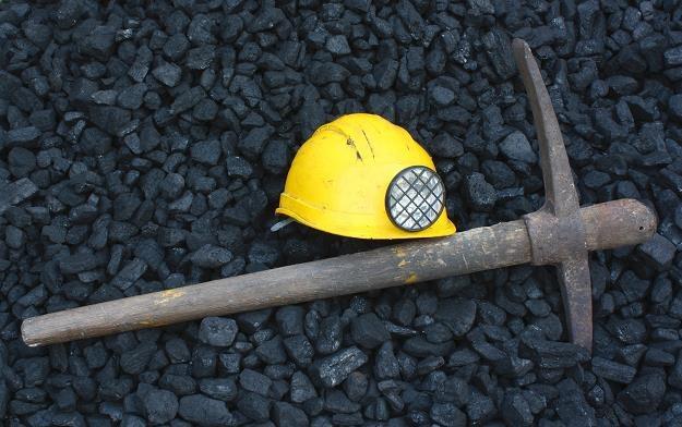 Regiony górnicze w Niemczech żądają miliardów euro /©123RF/PICSEL