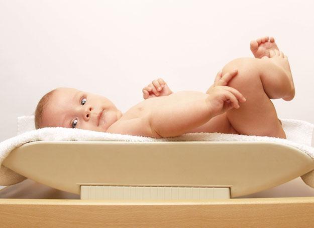 Regularne monitorowanie wzrostu i wagi bobasa pozwoli w mig wykryć ewentualne nieprawidłowości /© Panthermedia