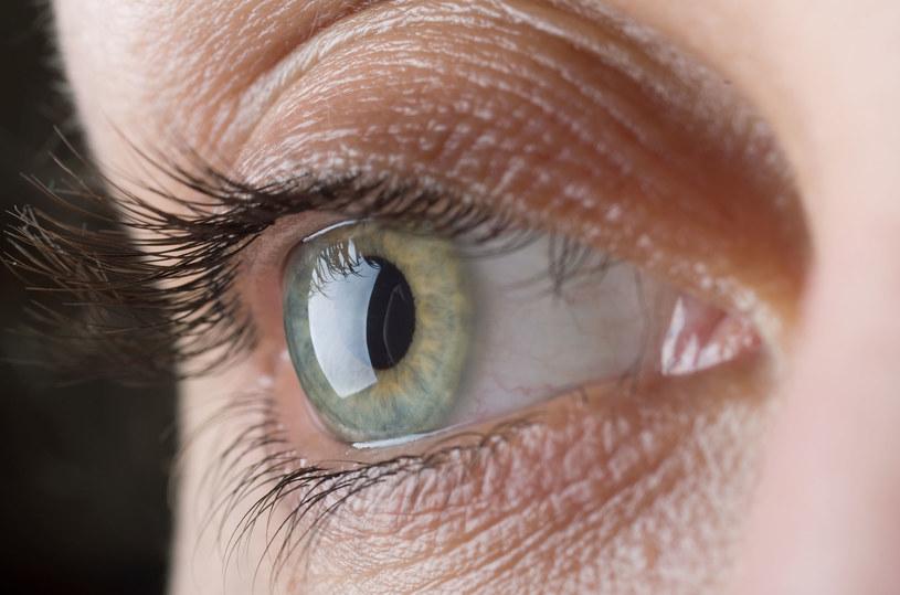 Regularnie badaj wzrok, by uniknąć niemiłych niespodzianek. Wcześnie wykryta choroba daje większe szanse na wyleczenie /123RF/PICSEL