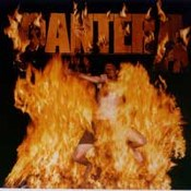 Pantera: -Reinventing The Steel