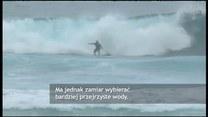 Rekin zaatakował surfera