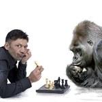 Reklama specjalnie dla małp?