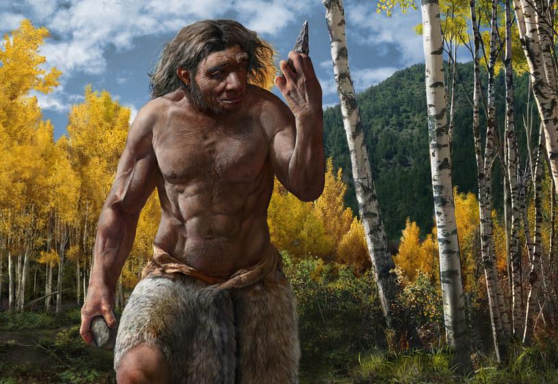 Rekonstrukcja Homo longi /materiały prasowe