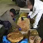 Rekordowy przemyt kokainy wartej 3 mld zł. Narkotyki ukryte w pulpie ananasowej