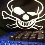 Rekordy cyberprzestępczości