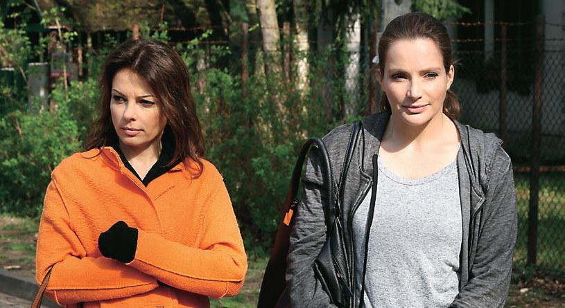 Relacje między Agnieszką a Kasią (Katarzyna Glinka, zdj.) są teraz bardzo napięte. Wszystko przez zazdrość… /Tele Tydzień