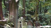 Renowacja i upamiętnienie cmentarzy żydowskich