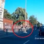Reprezentant Polski potrącony na przejściu dla pieszych