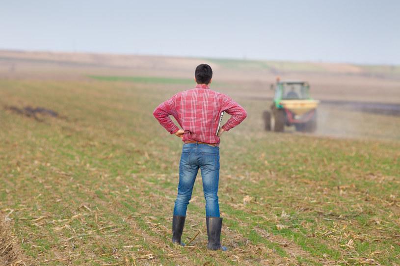 Restrukturyzacja to najtańsza opcja dla zadłużonego rolnika /123RF/PICSEL