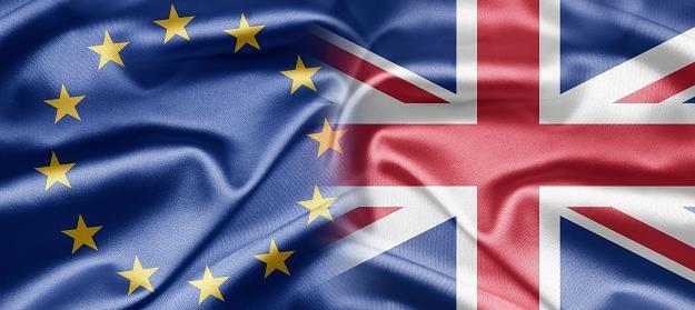 Restrykcje zasiłkowe dla imigrantów z UE /©123RF/PICSEL