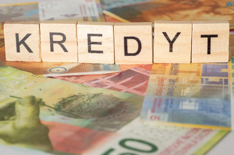 Rezcznik Finansowy nie wyklucza zmiany stanowiska w sprawie kredytów frankowych /123RF/PICSEL