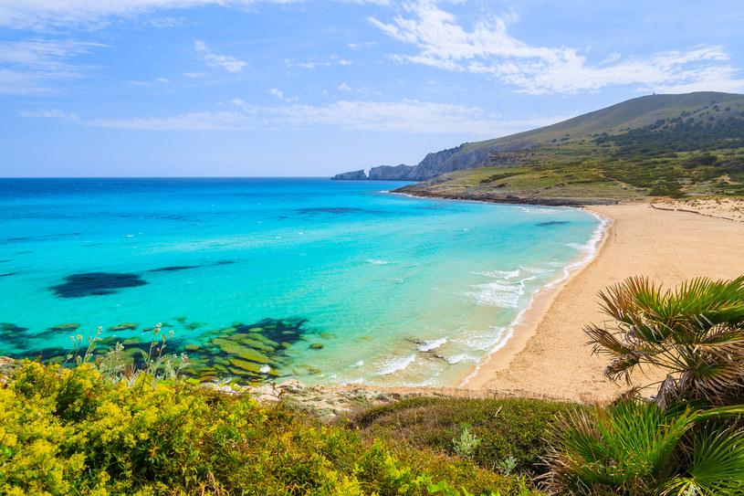 Rezerwacje na świąteczne wyjazdy na Baleary rozeszły się w mgnieniu oka /123RF/PICSEL