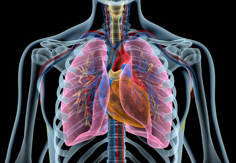 Rezonans magnetyczny i EKG potwierdzą przebycie takiego zawału /123RF/PICSEL