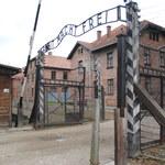 RMF24: Nowe tropy ws. popiołów z krematorium obozu Birkenau