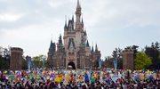 RMF24: Rozjuszony bizon sterroryzował paryski Disneyland